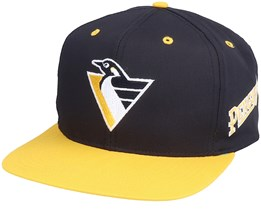 Pittsburgh Penguins Logo Two Tone NHL Vintage White/Black Snapback - Twins Enterprise