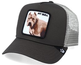 Pitbull Grey Trucker - Goorin Bros.