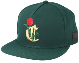 Royal Forest Snapback - Cayler & Sons