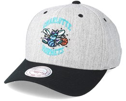 Charlotte Hornets Team Logo 2 Tone 110 Adjustable - Mitchell & Ness