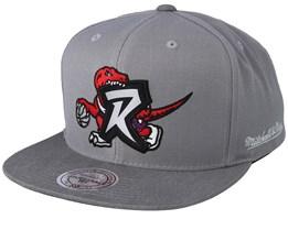 3d50adbc9 Toronto Raptors Overlap Grey Snapback - Mitchell   Ness