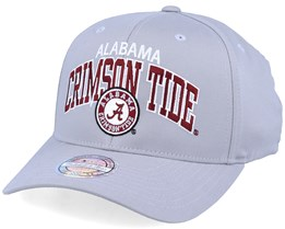Alabama Crimson Tide Team Arch Grey 110 Adjustable - Mitchell & Ness