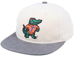 Florida Gators Blockhead Deadstock Khaki/Grey Snapback - Mitchell & Ness