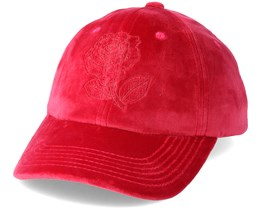 Steelo Dad hat Red Adjustable - The Hundreds