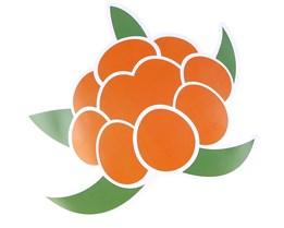 Sticker Berry Logo 14x13 CM Green/Orange - Sqrtn