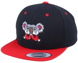 Kids Koala Bear Boxer Black/Red Snapback - Kiddo Cap